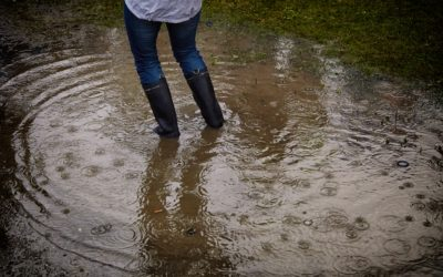 Flood Insurance: What is Covered?